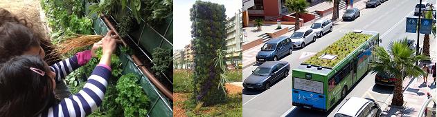 El verde en las ciudades